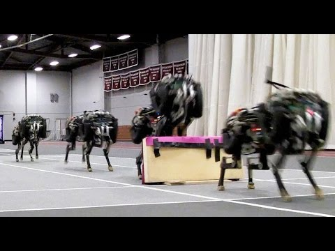[VIDEO] MIT Cheetah Robot